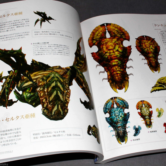 Monster Hunter Hunter's Encyclopedia 4