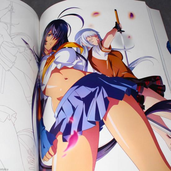 Ikki Tousen - Animation Art Works II