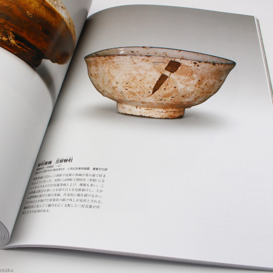 Japanese Tea Ceremony Photo Reference and Guide