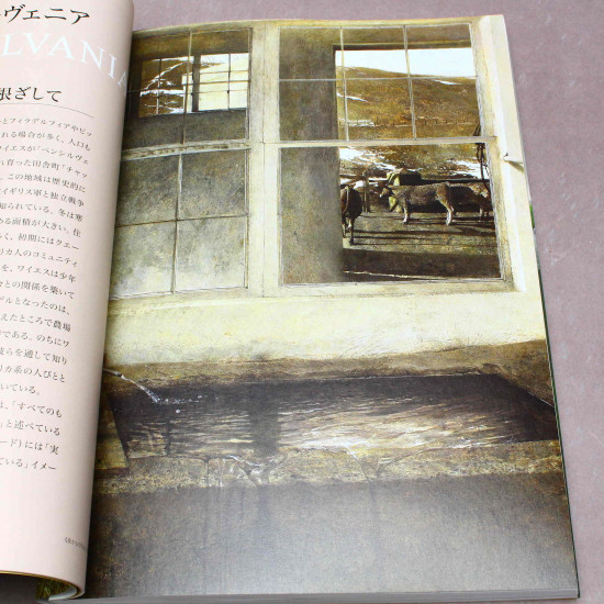 Andrew Wyeth - Art Book - Japanese edition