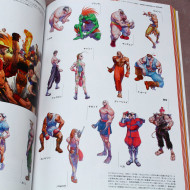 Street Fighter Memorial Archive: Beyond the World