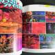 Hoshi no Kirby: Star Allies Official Sketch Artworks
