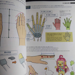 How to Draw Practical Poses of the Hands