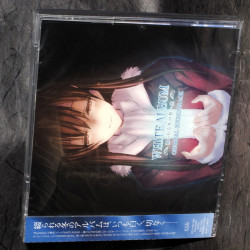 White Album Tsuzurareru Fuyu No Omoide