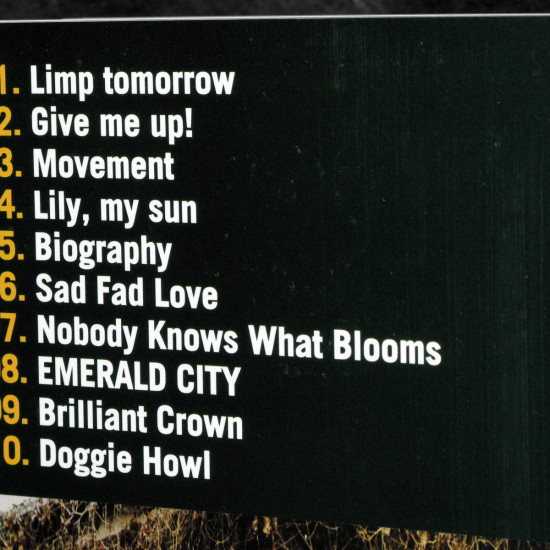 The Pillows HORN AGAIN Band Score Book