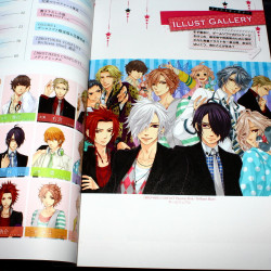 BROTHERS CONFLICT Passion Pink Official Visual Book
