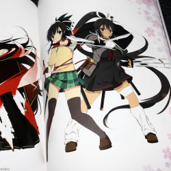 Senran Kagura 2 -Shinku - Official Perfect Bible and Illustrations